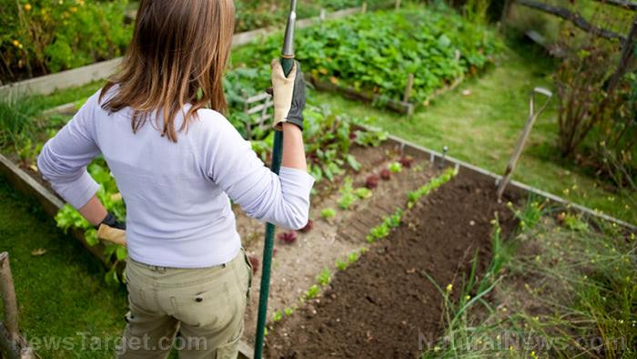 Woman-Proud-Home-Garden-Vegetables-Soil