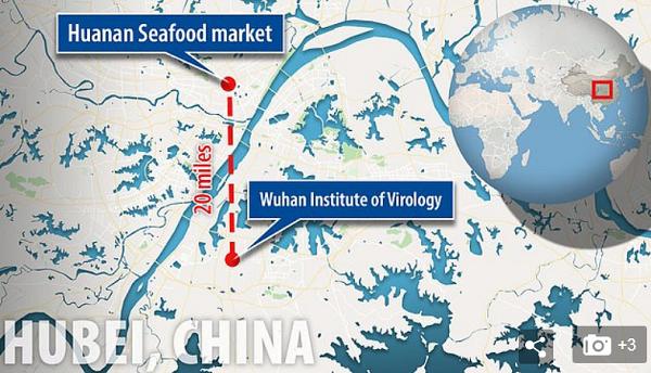 wuhan-china-map-BSL-4-biohazard-facility