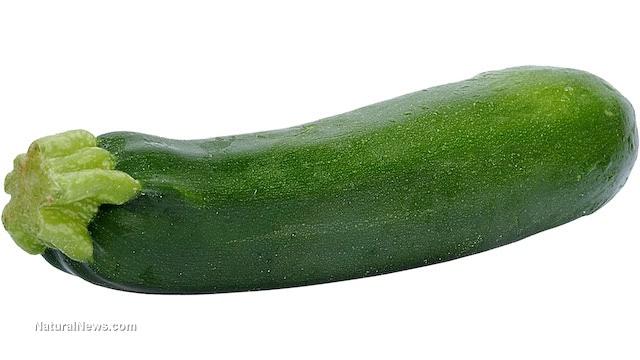 Zucchini-Italian-Squash-Vegetable-Green