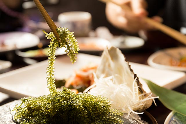 Edible seaweed is packed with iodine for improved thyroid health