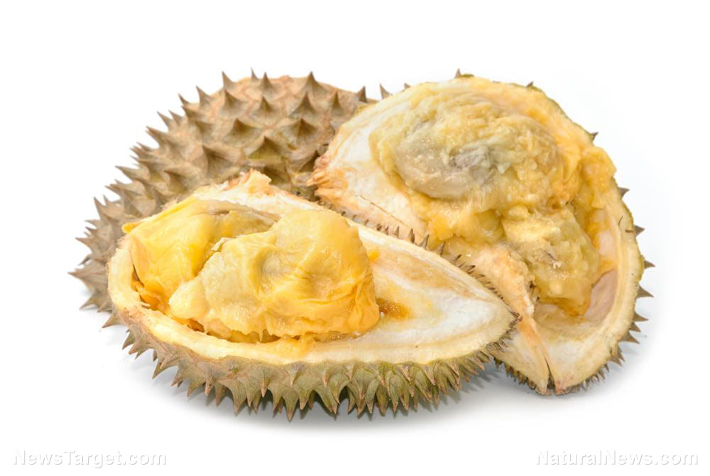 Better than it smells: 5 Health benefits you can get from the durian fruit