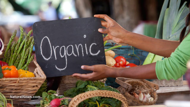 Record growth of organic food consumption in the U.S. and India