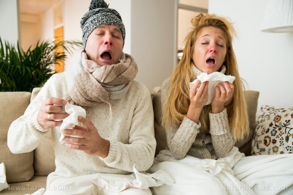 Natural flu remedies and preventatives you need to know