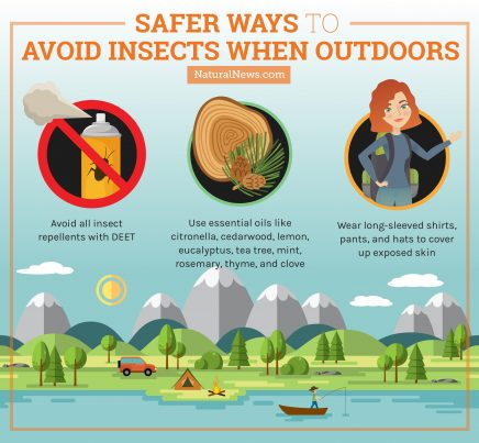 Safer Ways to avoid insects when outdoors