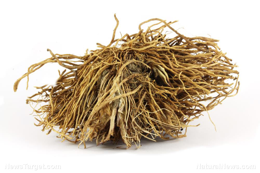 """The """"root"""" of your problems: How valerian root can help with anxiety and sleep"""