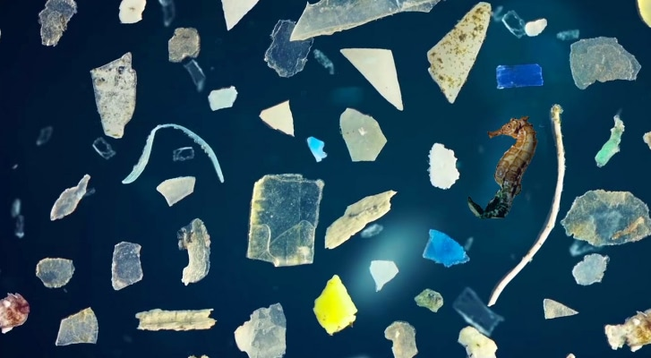 Microplastic pollution is the REAL threat to our oceans, warn scientists