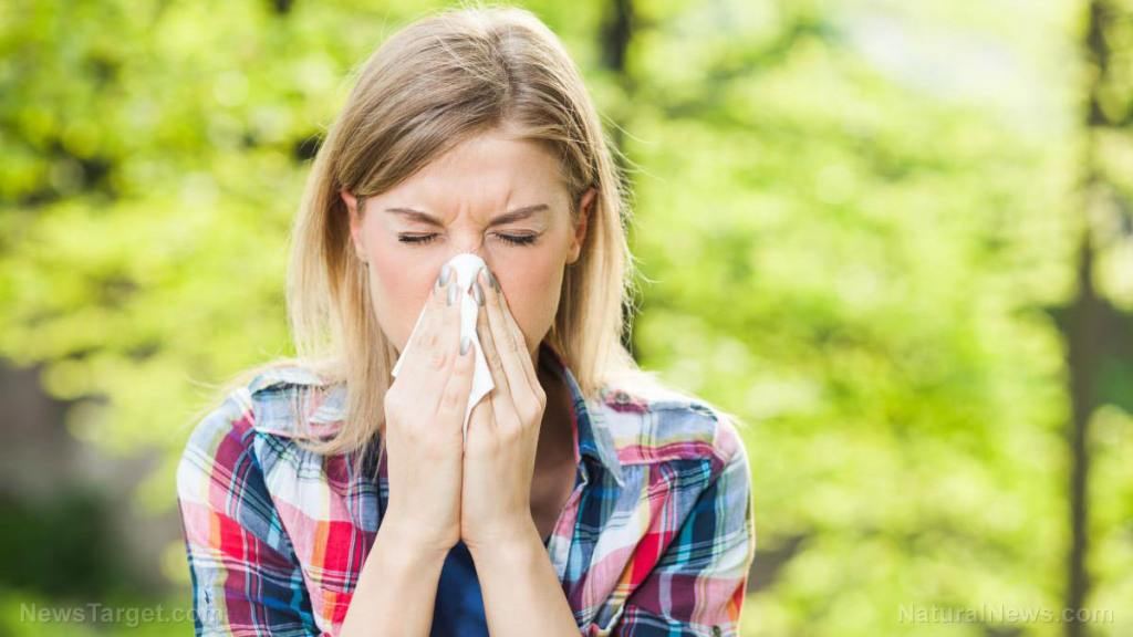 Can the common cold help fight SARS-CoV-2?