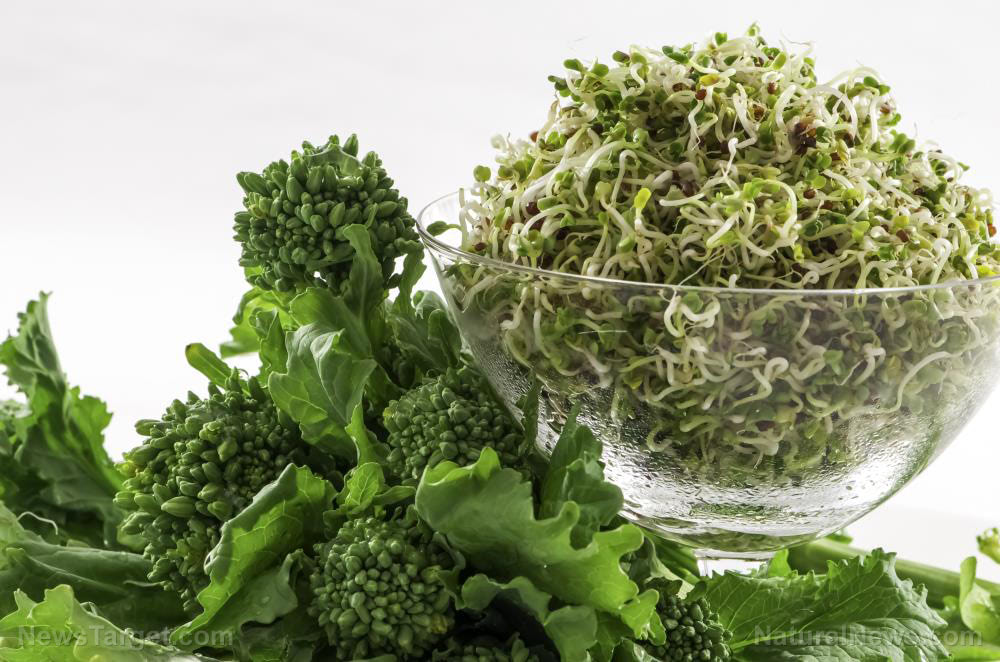 Cancer prevention: 6 Ways nature helps you fight cancer