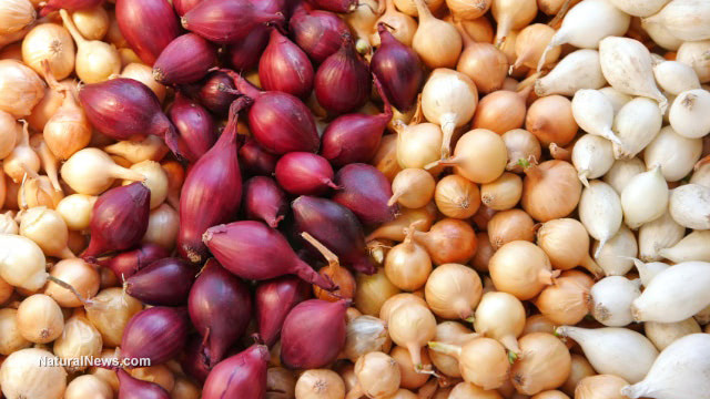 ONIONS are just as effective as chemotherapy at beating cancer