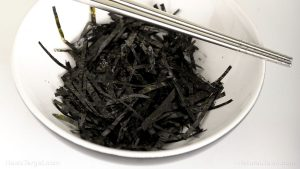 dried seaweeds
