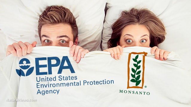 EPA protected Monsanto's corporate profits by hiding the truth about glyphosate and cancer for decades