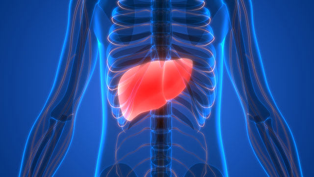 Fatty liver disease - Choline provides a nutritional solution for a silent epidemic
