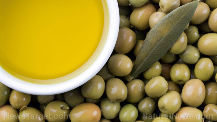 Olive oil halts growth of breast cancer tumors