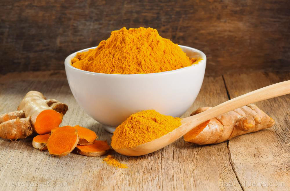 Can fish oil and curcumin prevent muscle atrophy?