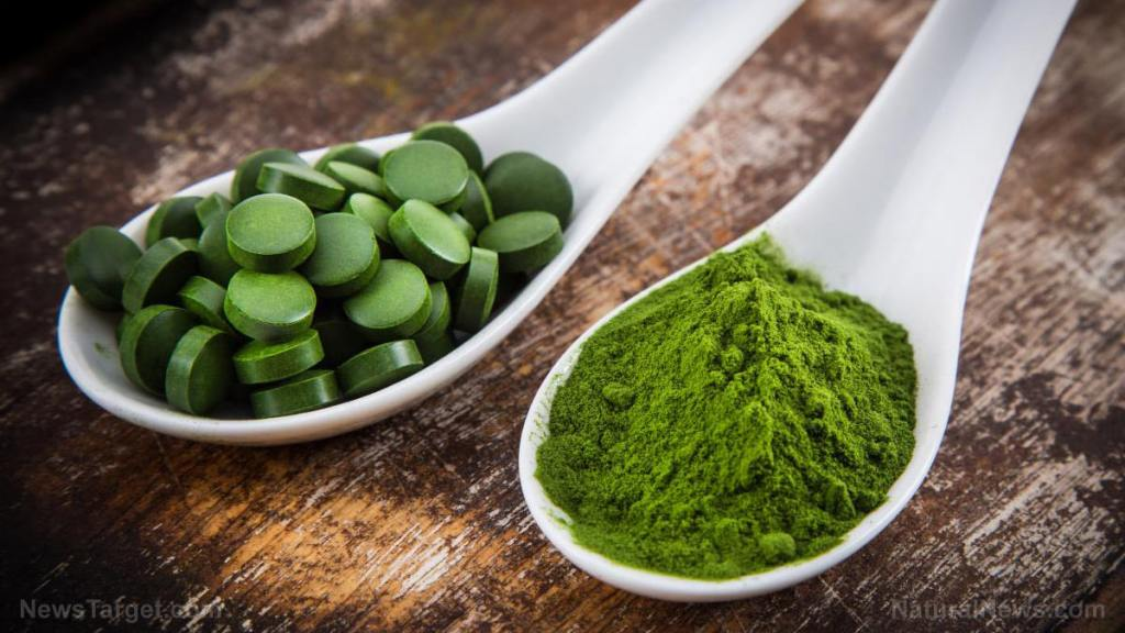 Is chlorella the most potent superfood?