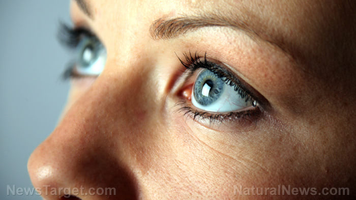 7 Vitamins and nutrients that promote eye health