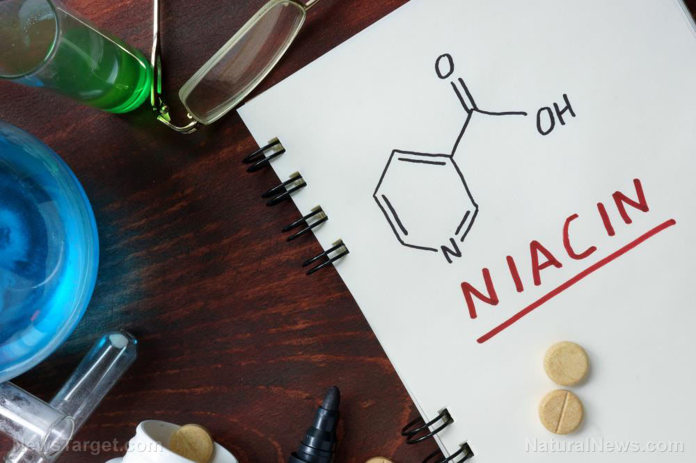 Understanding how niacin treats high cholesterol levels