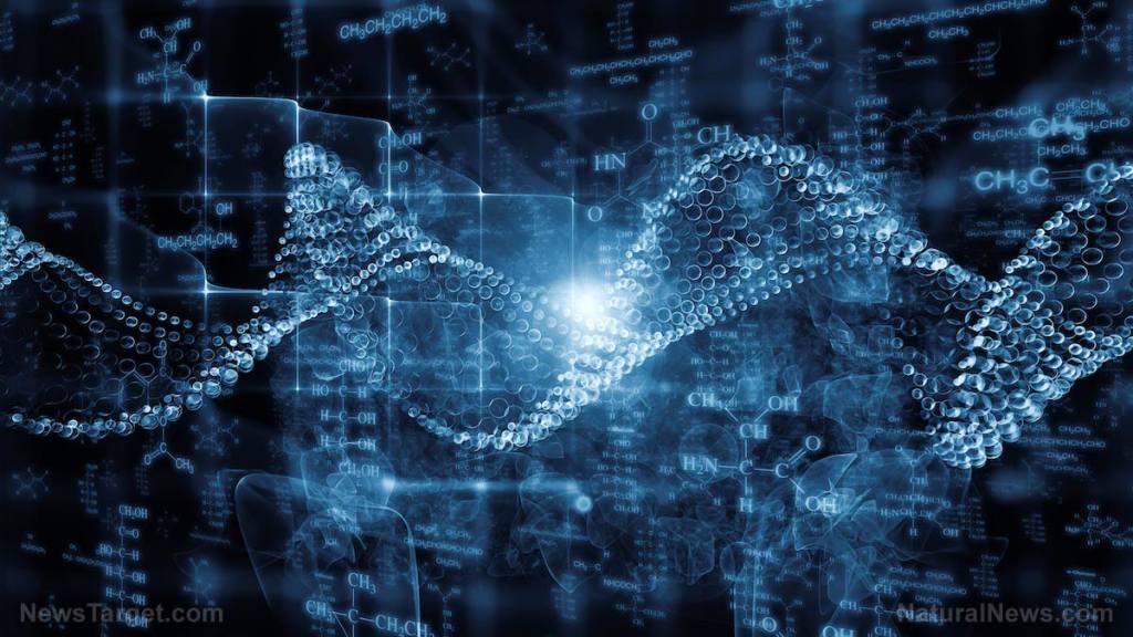 Paper arguing for intelligent design passes peer review