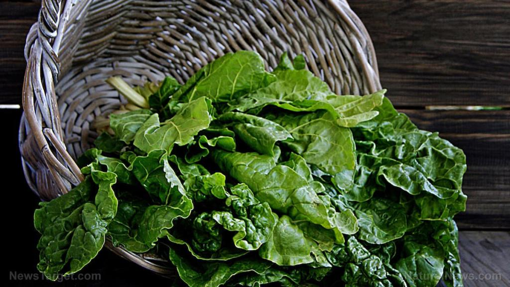 5 Good reasons to include more magnesium-rich foods in your diet