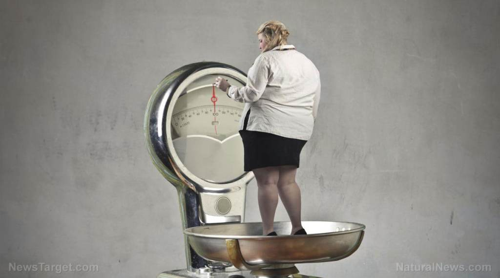 Obesity, diabetes, and liver health: Scientists explain the relationship that leads to insulin resistance