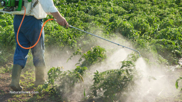 Pesticides may be a leading cause of major diseases