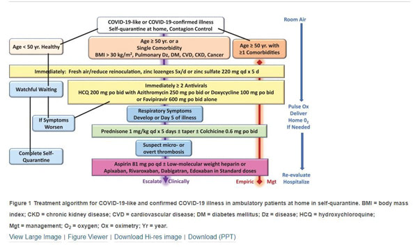 Treatment algorhitm for COVID-19-like and confirmed COVID-19 illness