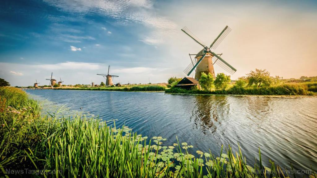 """Hague court declares Dutch coronavirus lockdowns """"illegitimate, far-reaching violation"""""""