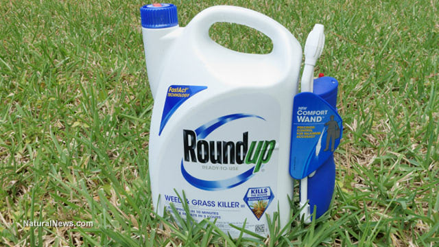 'Glyphosate is definitely genotoxic,' declares WHO scientist who authored Roundup cancer study