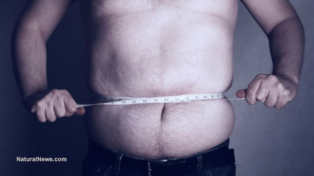 Fat isn't fit: Study directly links obesity to heart disease