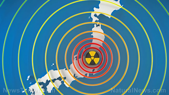 "Japan to dump radioactive Fukushima water into the ocean, says it's ""unavoidable"""