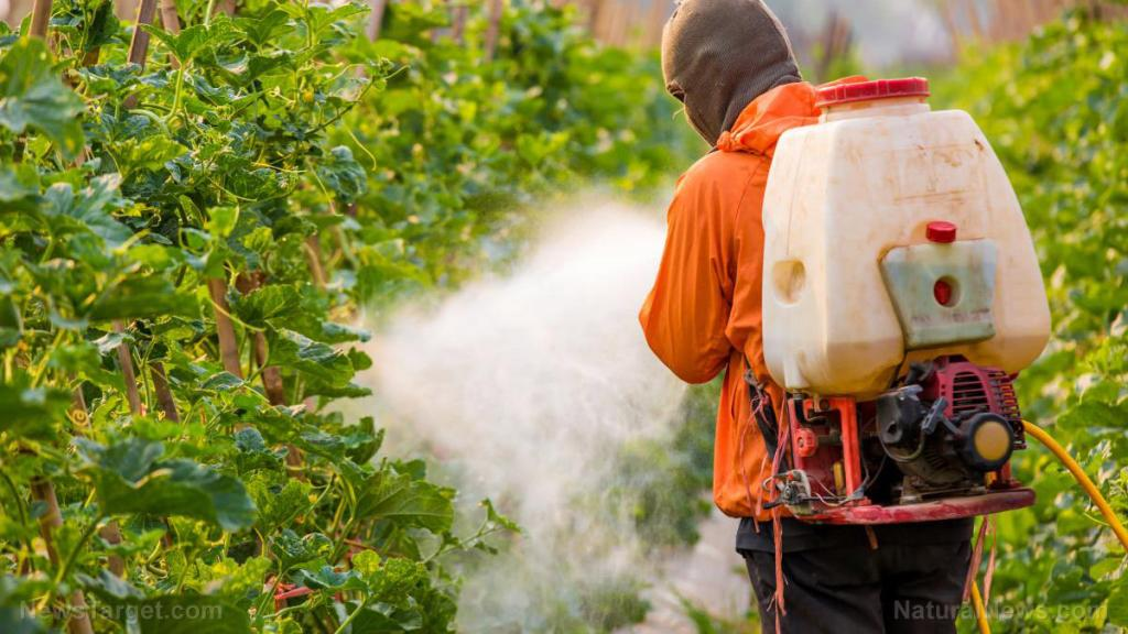Brain-damaging neurotoxic pesticide found in hundreds of foods: EPA allows pesticide lobby to dictate policy