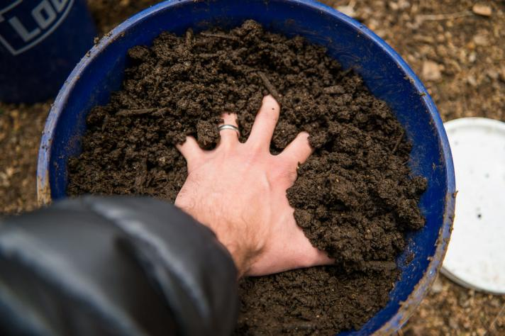 Organic farms have better soil (thanks to microbes)