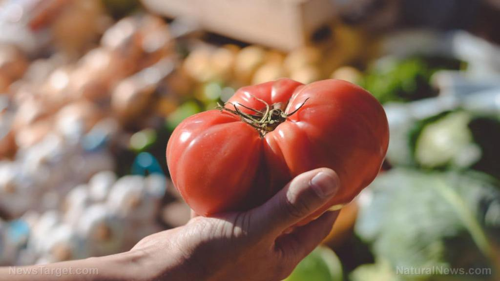 Lycopene, the pigment that gives tomatoes their color, is one of the most powerful anti-cancer agents yet discovered