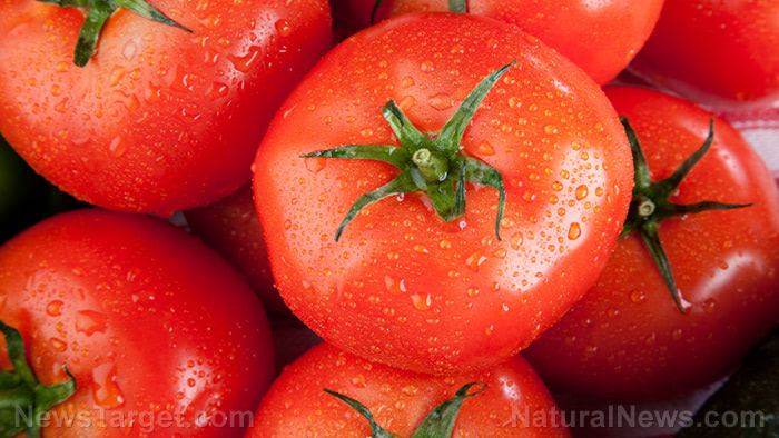 Lycopene is a promising nutrient that can prevent gastric diseases associated with H. pylori