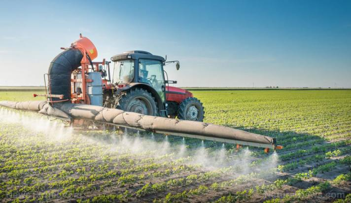 Too Much Fertilizer Causes Loss of Plant Diversity
