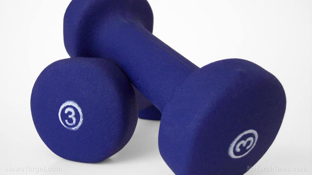 Weight training protects the brain from aging, scientists discover