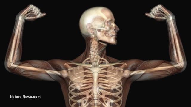 Prevent bone loss with vitamin C