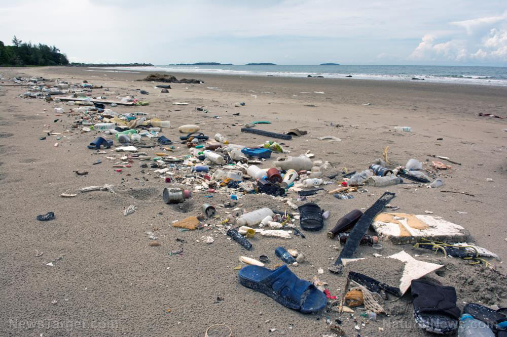 Will plastic pollution end the world? Experts say it's possible