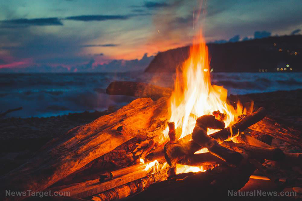 Fire is a versatile survival asset – Here's a list of things you can cook over it