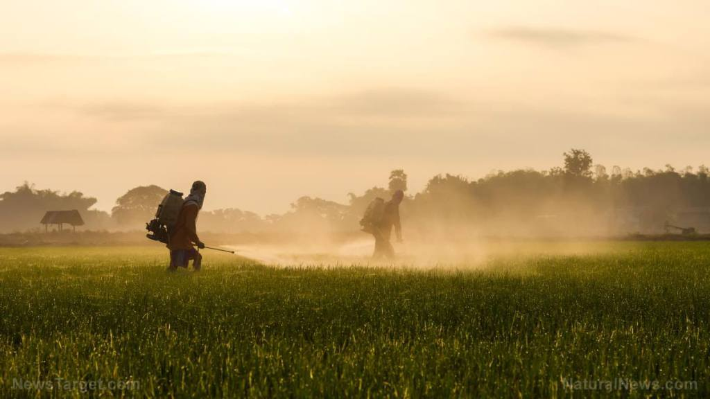 Syngenta weed killer trial moved to June, explores whether paraquat causes Parkinson's disease