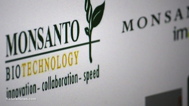 International Monsanto Tribunal: Monsanto on trial for crimes against humanity and the environment
