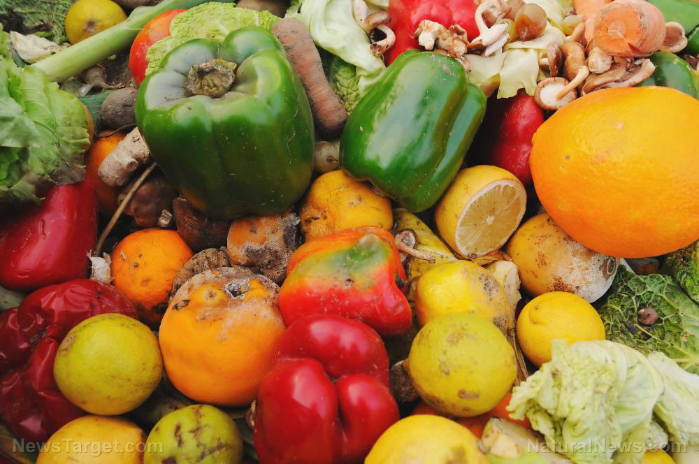"""From trash to treasure: Scientists to turn food waste into """"high-value products"""" for new markets like cosmetics and packaging"""