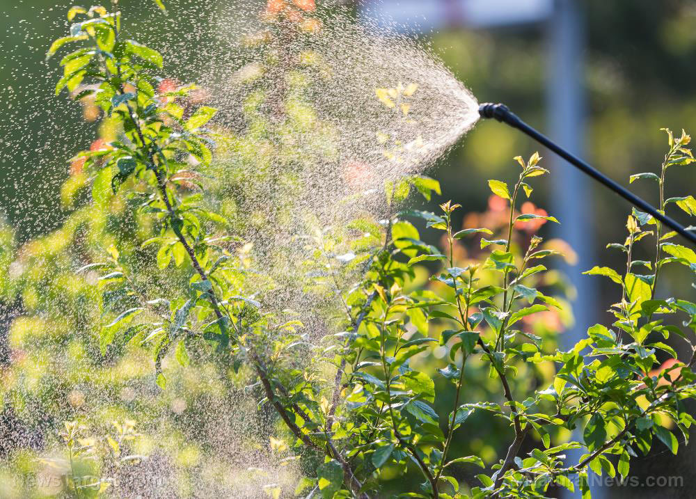 Federal court says EPA must ban pesticide linked to brain damage in children