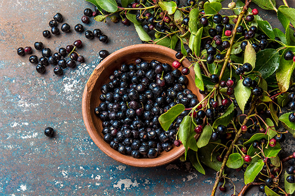 Studies show that maqui berries are rich in antioxidants and anthocyanins
