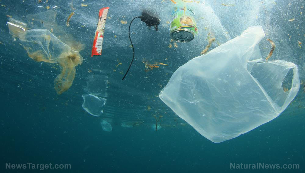 Follow these tips to reduce plastic pollution