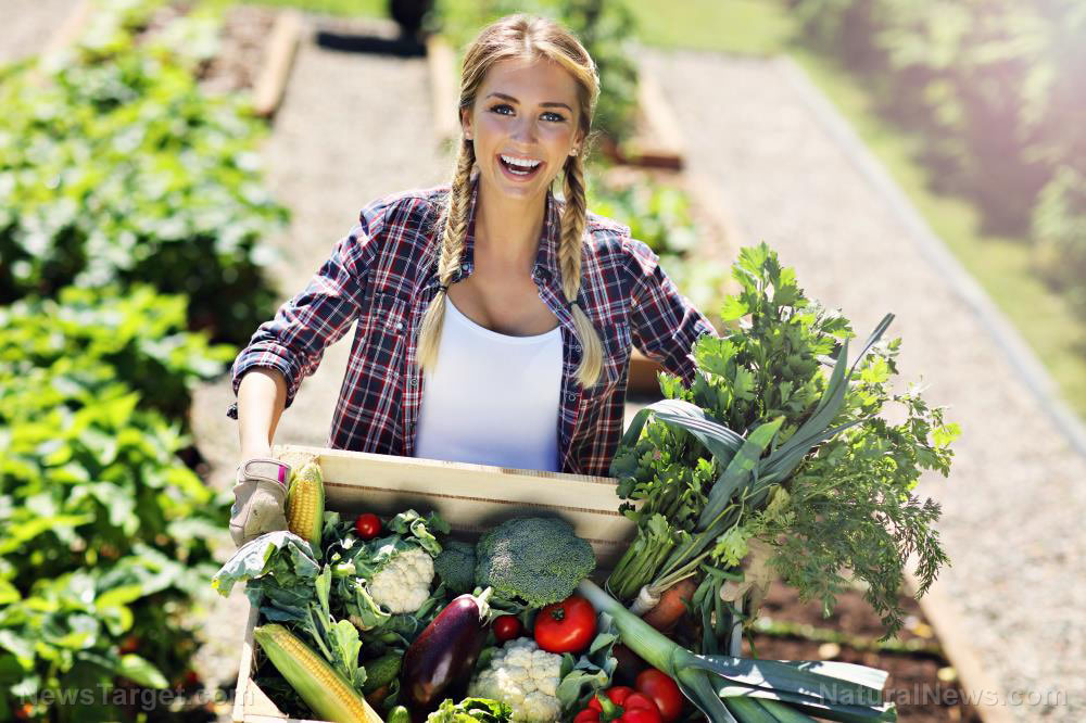 Can you survive on your own garden if you need to? Having a productive garden could make or break your survival