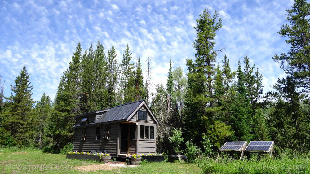 Self-sustainability and independence: A beginner's guide to living off the grid