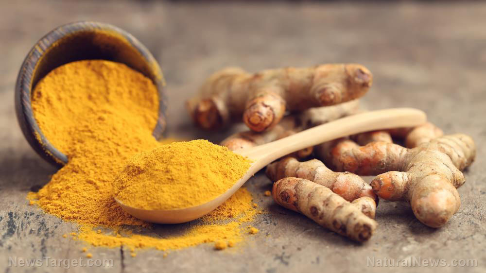 How to grow, harvest and use turmeric, a versatile superfood