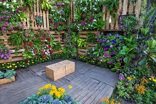 12 Budget-friendly tips for creating a beautiful garden