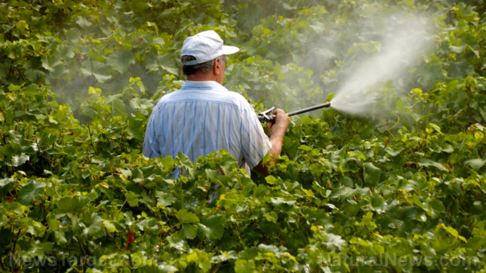 Landmark study describes the link between pesticide levels in expectant mothers and autism risk in their infants